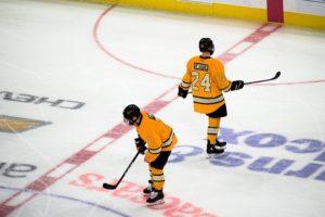 Hokejová výstroj a jej súčasti